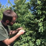 Check out Shaun Malady, our Tree Doctor on WJJY!