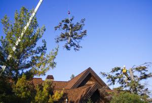 Crane Lift 2011 004